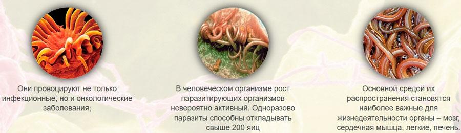 eatchervi