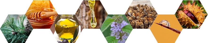состав Пчелиного спаса