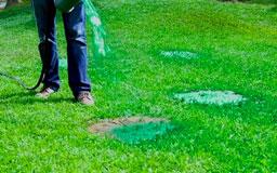 полив травы Гидро Муссом