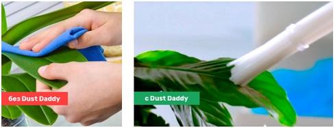 Dust Daddy- удобство использования