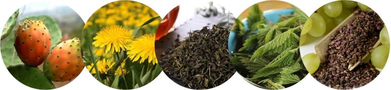 натуральные ингредиенты для детокса