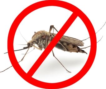 комары умирают