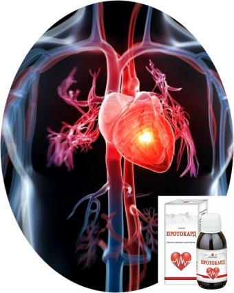 помощь сердечно-сосудистой системе