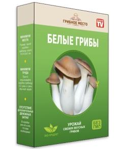 Грибное место – готовый набор для выращивания домашних грибов