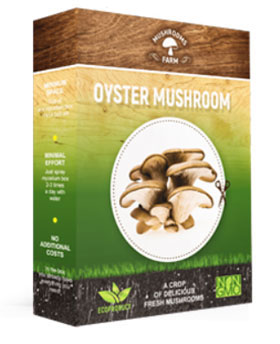 Mushrooms Farm для выращивания грибов