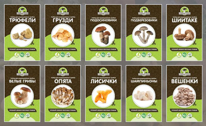 Набор грибов